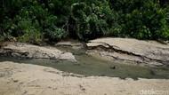 Seperti Jepang, Perbatasan RI-Papua Nugini Juga Punya Onsen