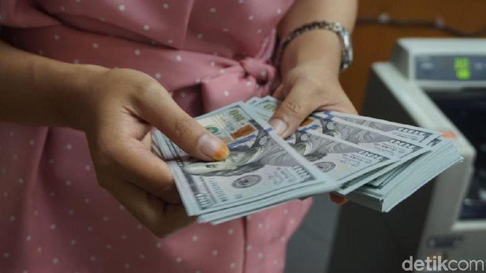Foto: Dolar AS/ Dok detikFinance