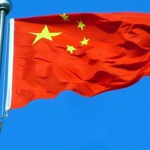 Ratusan Investor China Mau Bangun Industri Kayu di RI