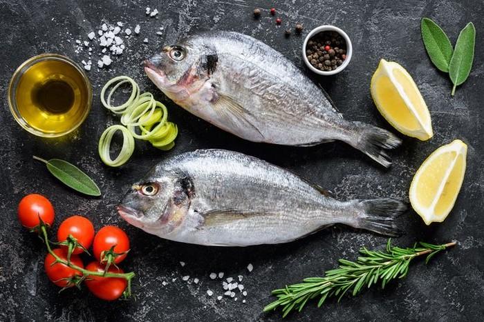 ilustrasi ikan