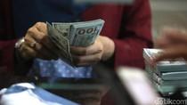 Dolar AS Menjinak Hari Ini, BI: Kepanikan Mulai Turun