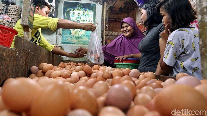 Pedagang telur ayam/Foto: Rengga Sancaya