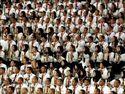 146 Instansi Belum Umumkan Hasil Seleksi Administrasi CPNS