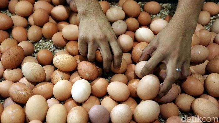 Telur Ayam Foto: Rengga Sancaya
