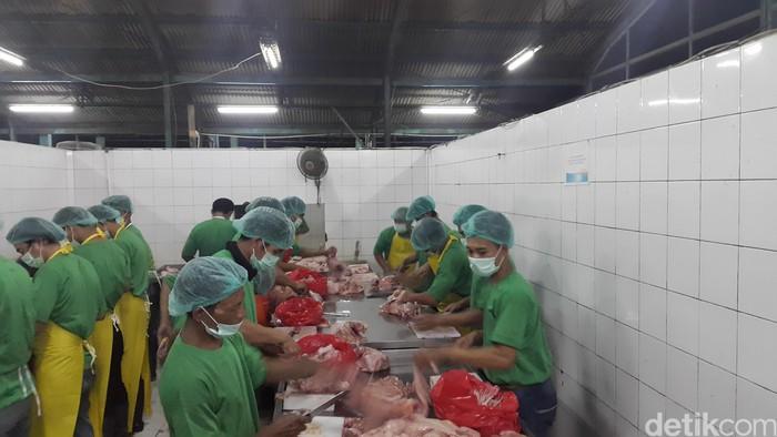 Daging yang segar kemudian dikemas atau dipotong secara fillet, tergantung permintaan dari produsen. (Foto: detikHealth/Khadijah Nur Azizah)