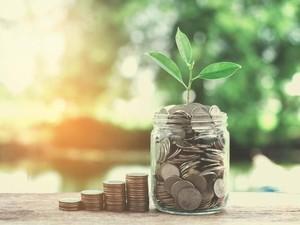 Wanita Hidup dengan Uang Rp 26 Ribu Sehari agar Bisa Pensiun di Usia 34