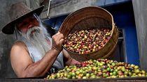 Ditelantarkan Bank, Petani Indonesia Berpaling ke Crowdfunding