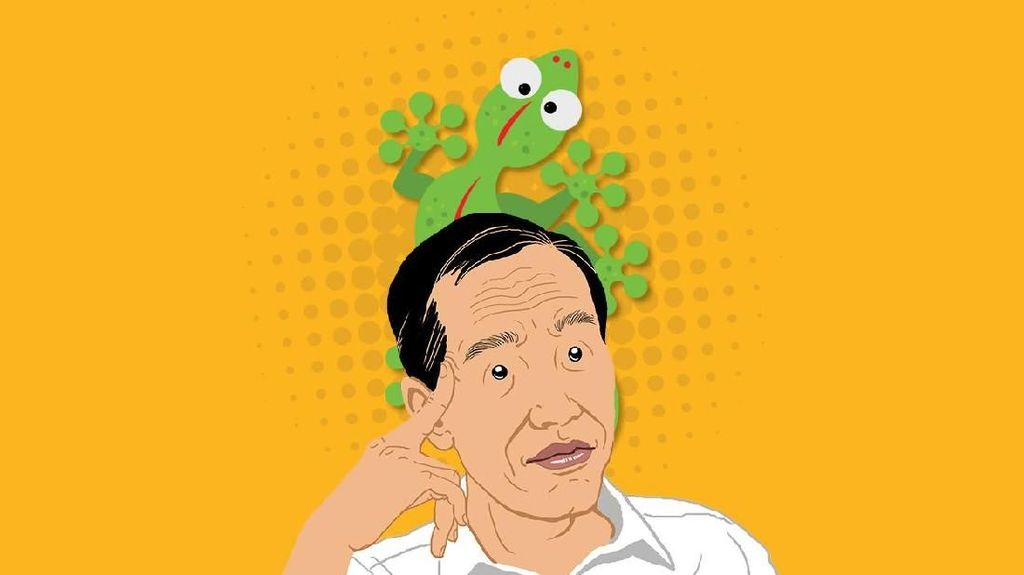 Maju Mundur Empat Kebijakan Jokowi
