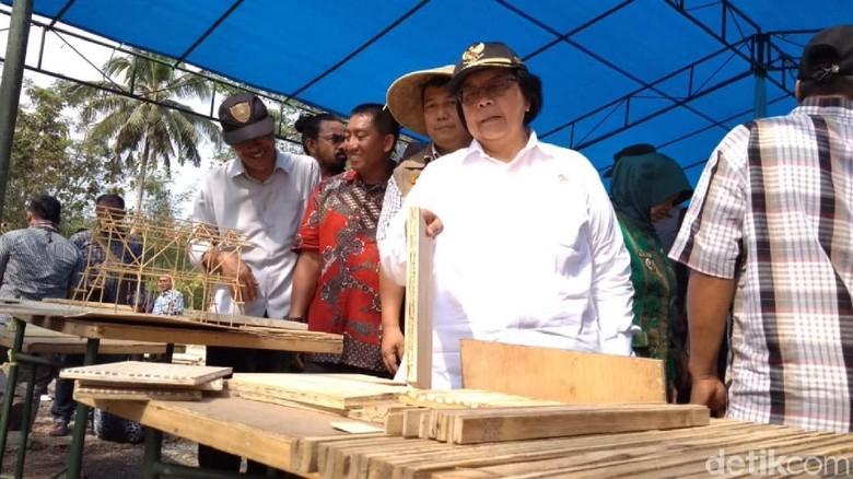 Menteri Siti Bagikan 15 Ribu Bibit Bambu ke Warga Banjar