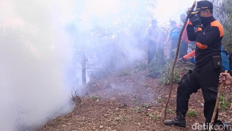 Kebakaran di Lereng Merbabu Padam, 15 Hektar Lahan Hutan Ludes