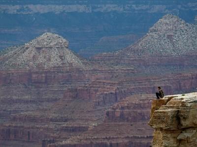 Nahas, Niat Selfie Turis Malah Jatuh ke Jurang Grand Canyon