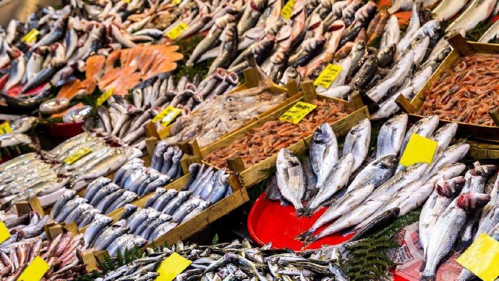 Makan Ikan 3 Kali Seminggu Ternyata Dapat Mencegah Kanker Usus