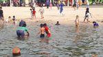 Melihat Wujud Ubur-ubur yang Muncul di Pantai Ancol