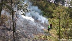 Relawan Juga Hadang Api di Gunung Merbabu dari Ampel Boyolali
