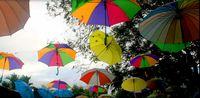 Daerah Rawan di Jayapura Ini Diubah Jadi Kafe Gaul Kekinian