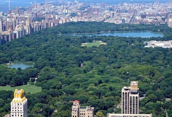 Amerika Serikat punya banyak ruang publik yang asyik buat bersantai, salah satunya Central Park New York (William Edwards/AFP)