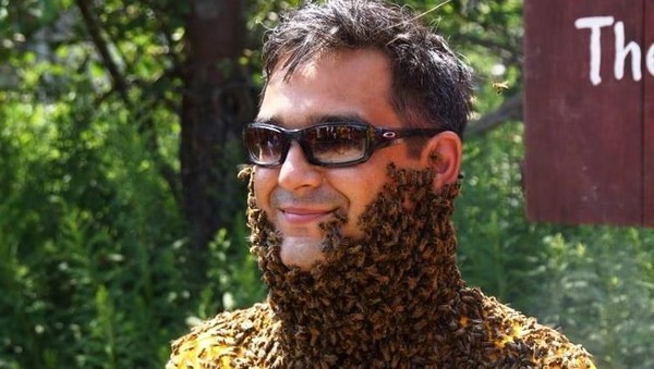 Foto: Clovermead Bee Beard Competition diadakan di Clovermead Adventure Farm, Aylmer, Kanada setahun sekali (Clovermead Adventure Farm/Facebook)