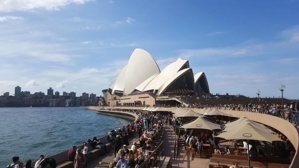 Tak terlalu jauh dari Tanah Air, Australia menarik buat dikunjungi sendirian (Fitraya/detikTravel)