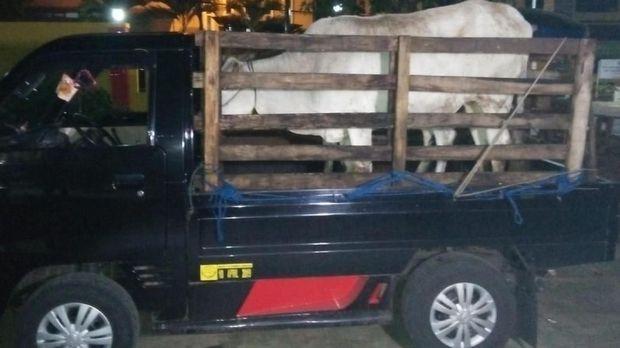Tragedi Gang Maut Sukabumi, Polisi Tangkap Pembunuh Enang