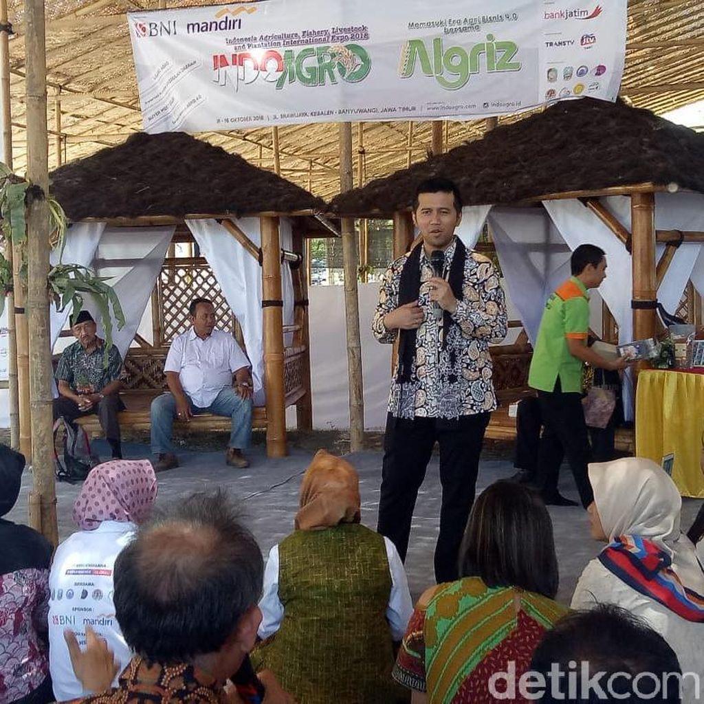 Emil Dardak Bicara Agrobisnis 4.0 di Banyuwangi, Apa Itu?