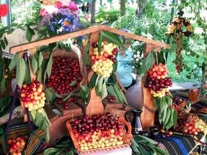 Festival Bubur hingga Panen Buah Cherry, Ini 5 Festival Makanan Unik di Dunia