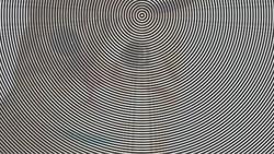 Kalau kamu yakin dengan kejelian mata kamu, harusnya bisa tebak gambar di balik ilusi ini. Awalnya mungkin mudah tapi akan semakin sulit lho.