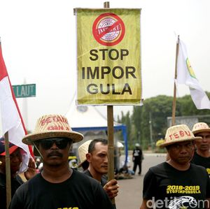 Ratusan Petani Tebu Tuntut Pemerintah Hentikan Impor Gula