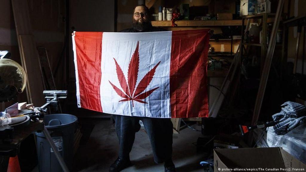 Akuisisi Pesaingnya, Perusahaan Ganja Kanada Ini Kuasai Pasar AS