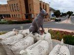 Kota Pedalaman Australia Ini Frustrasi karena Penduduknya Berkurang