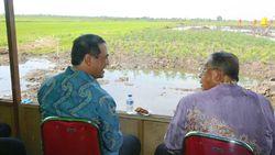 Kelola Rawa Jadi Lahan Pertanian, Mentan Didukung Darmin