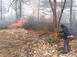 Hutan di Lereng Gunung Bentar Seluas 13 Hektar Terbakar