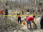 Pencari Rumput Temukan Kerangka Manusia di Hutan Grobogan