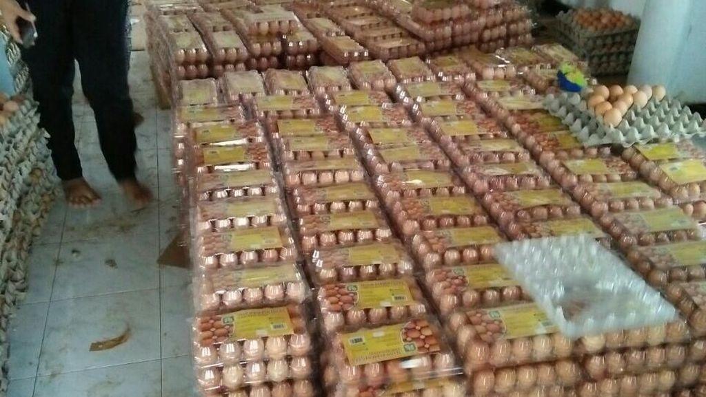 Produksi Berlebih Picu Harga Telur Ayam di Peternak Anjlok