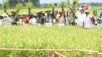 Bamsoet Kagumi Terobosan Jokowi Wujudkan Kedaulatan Pangan