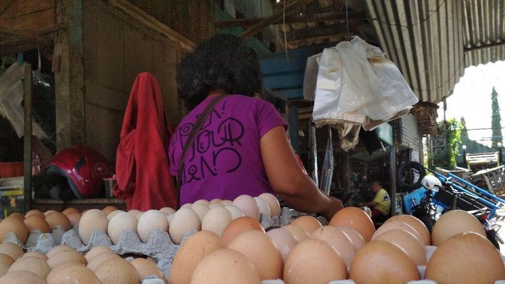 Harga Telur Ayam Naik, Kementan Sebut Stok Cukup