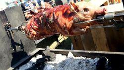 Waduh! Petugas Bandara Ini Temukan Babi Panggang di Koper Penumpang