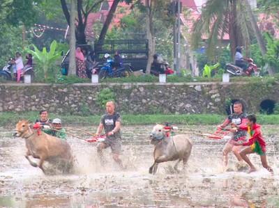 Petualangan Seru My Trip My Adventure di Sumatera Barat