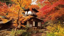 Foto Musim Gugur di Jepang, Jadi Ingin Liburan ke Kanagawa