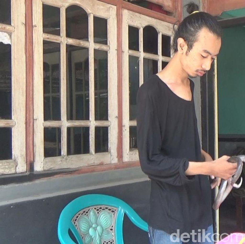 Rudi Manfaatkan Hobi Pelihara Kobra untuk Edukasi Masyarakat