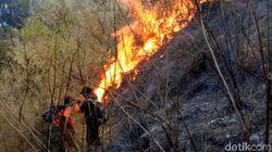 435 Hektar Hutan Arjuno Wilayah Pasuruan Habis Terbakar
