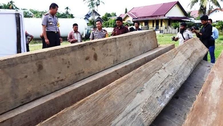 5 Pelaku Illegal Logging di Aceh Dibekuk, 10 Ton Kayu Diamankan