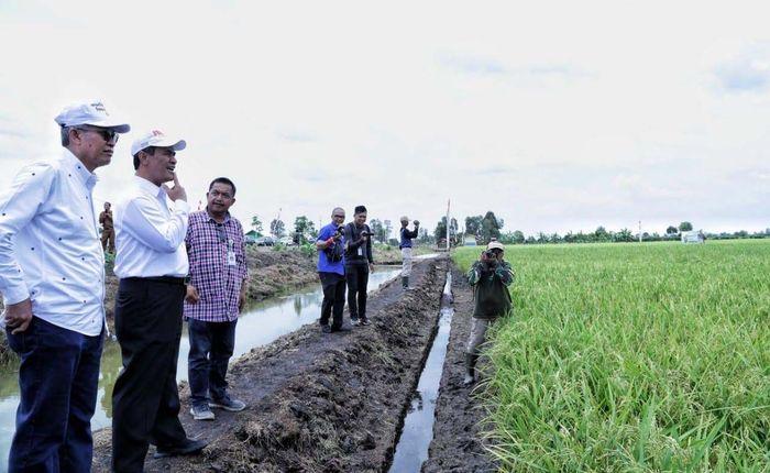 Mentan Amran Sulaiman saat meninjau salah satu lahan rawa di Desa Jejangkit, Kalsel pada HPS 2018. Istimewa/Kementan.