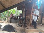 Polisi: Ortu Bayi Tewas Tercebur ke Kuali Gula Belum Jadi Tersangka