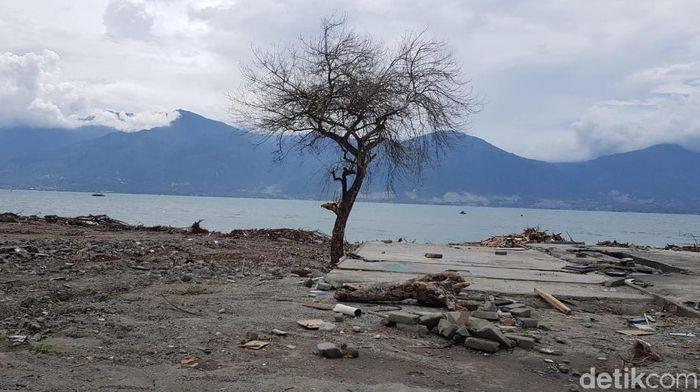 Foto: Pantai Palu: Tak Ada Gudang yang Tak Retak (Elvan Dany Sutrisno/detikcom)