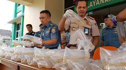 TNI AL Gagalkan Penyelundupan 10 Ribu Baby Lobster di Riau