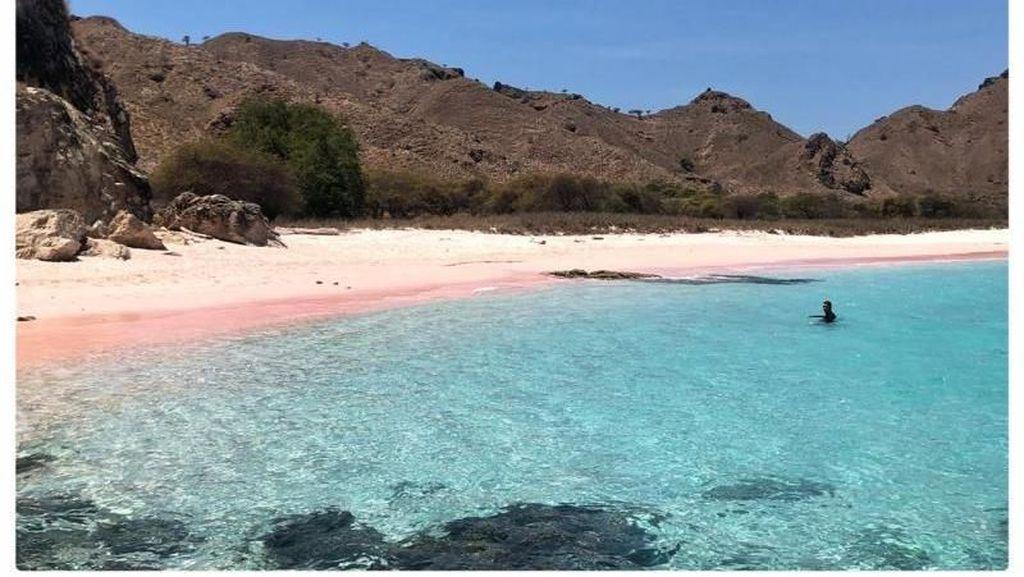 Halo Pantai Pink Labuan Bajo!