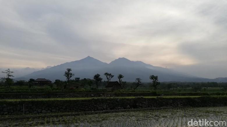 Tretes Night Run 2018 di lereng Gunung Arjuno-Welirang (Muhajir Arifin/detikTravel)