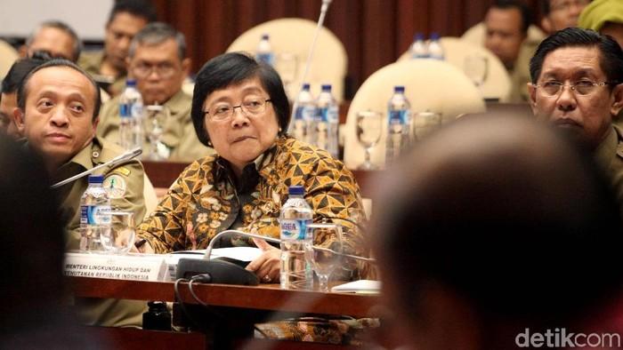 Menteri LHK Siti Nurbaya dalam rapat kerja dengan DPR. (Lamhot Aritonang/detikcom)