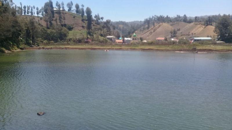 Ranupane siapa yang tak mengenalnya. Sebuah desa di ketinggian 2.100 mdpl. Ranupane juga menjadi gerbang pendakian menuju Gunung Semeru, lokasi tepatnya berada di Desa Ranu Pani, Kecamatan Senduro, Kabupaten Lumajang (Istimewa)