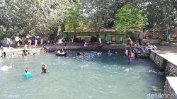 Seru! Renang Bareng Ribuan Ikan Tombro di Pasuruan